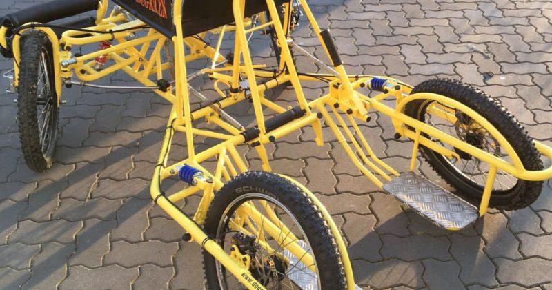 Umbauten Dogscooter